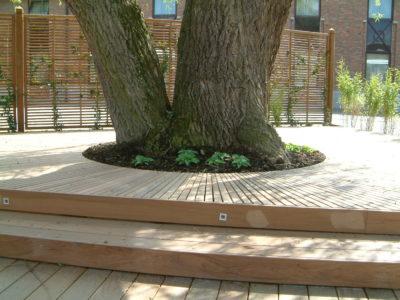 Menuiserie extérieure Belle terrasse design en Ipé englobant un arbre